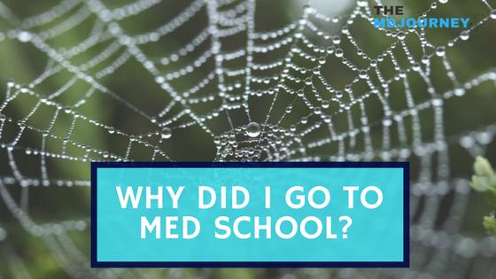 Why Did I Go To Medical School